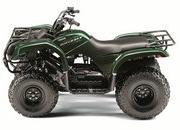 2012 Yamaha Grizzly 125 Automatic - image 422178