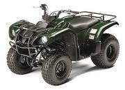 2012 Yamaha Grizzly 125 Automatic - image 422180