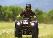 2012 Yamaha Grizzly 125 Automatic - image 422182