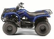 2012 Yamaha Grizzly 125 Automatic - image 422174
