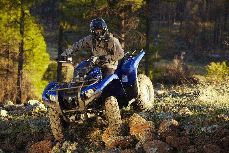 2012 Yamaha Grizzly 700 FI Auto 4x4 EPS High Resolution Exterior - image 421609