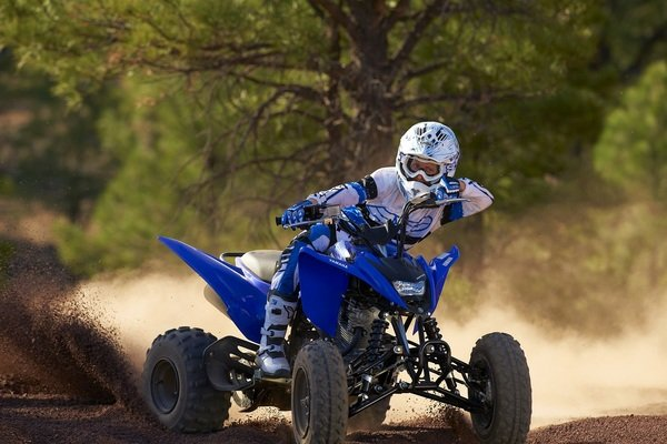 yamaha raptor  picture  motorcycle review  top speed