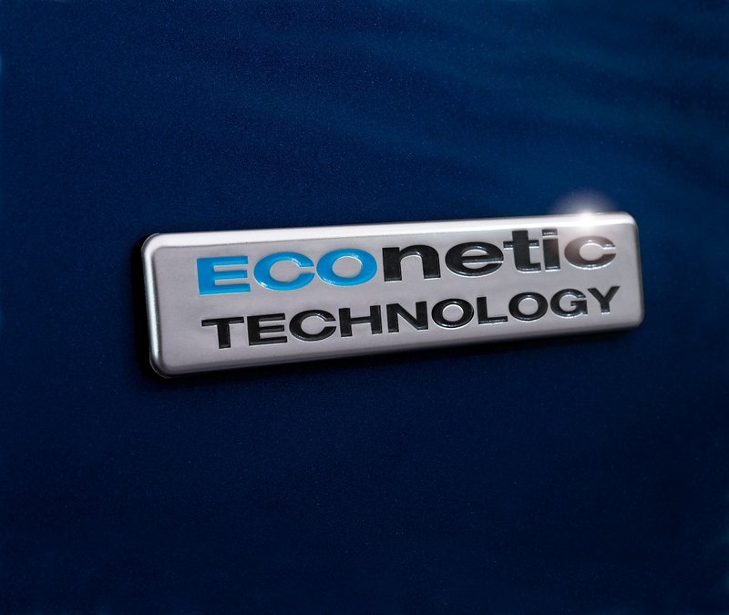 2013 Ford Fiesta ECOnetic Emblems and Logo - image 445538