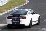 2013 Ford Mustang Shelby GT500 - image 451830