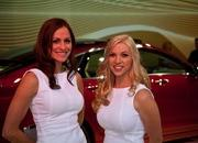 The Girls of the 2012 New York Auto Show - image 448452