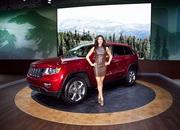 The Girls of the 2012 New York Auto Show - image 448459