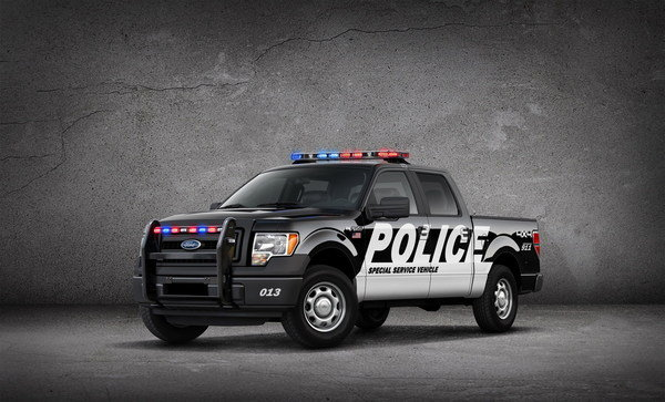 ford f-150 special service vehicle picture