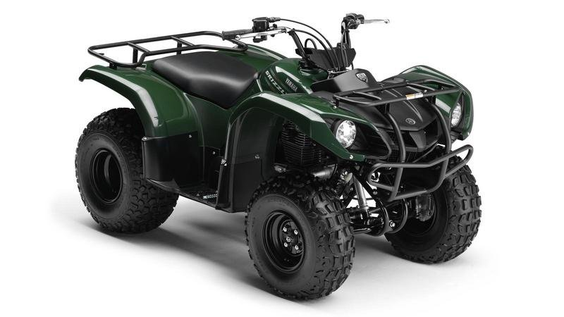 2013 Yamaha Grizzly 125
