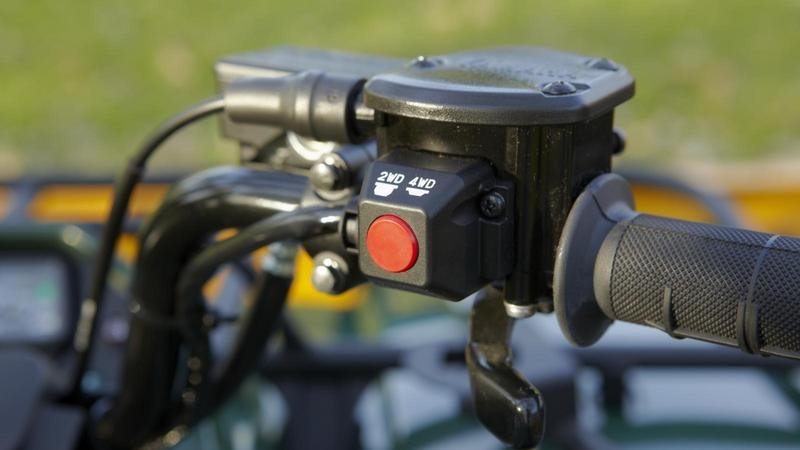 Yamaha Grizzly  Wd Review