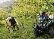 2013 Yamaha Grizzly 450 IRS - image 460975