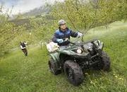 2013 Yamaha Grizzly 450 IRS - image 460968