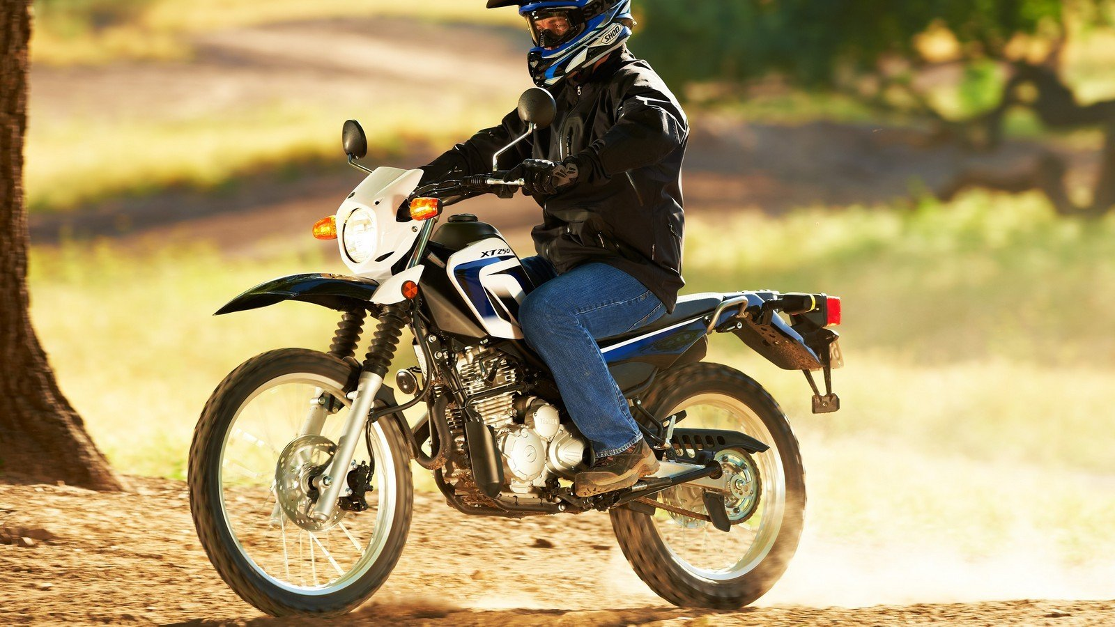 2013 yamaha xt250 picture 464422 motorcycle review for Yamaha xt250 top speed