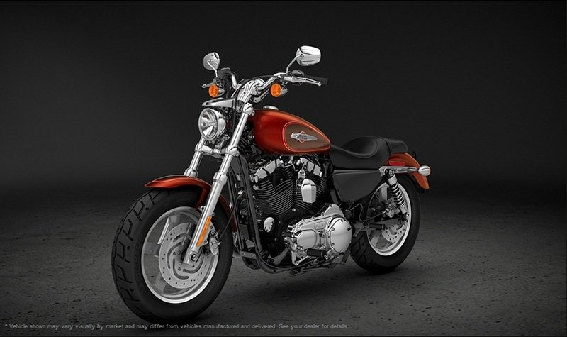 2013 Harley-Davidson Sportster 1200 Custom 110 Anniversary Edition Exterior - image 487235