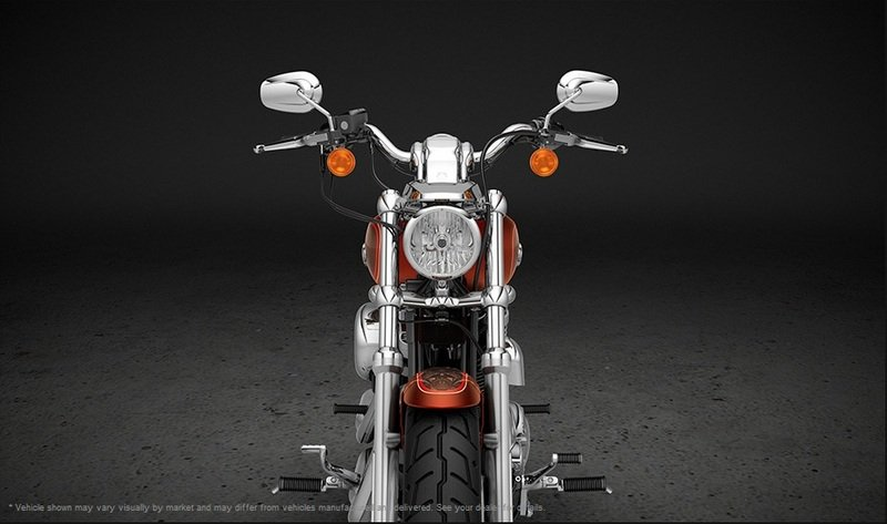 2013 Harley-Davidson Sportster 1200 Custom 110 Anniversary Edition Exterior - image 487237