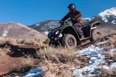 2013 Honda FourTrax Rancher AT Exterior - image 503634