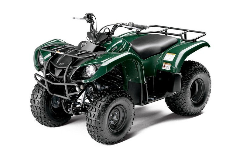 2013 Yamaha Grizzly 125 Automatic High Resolution Exterior - image 501419