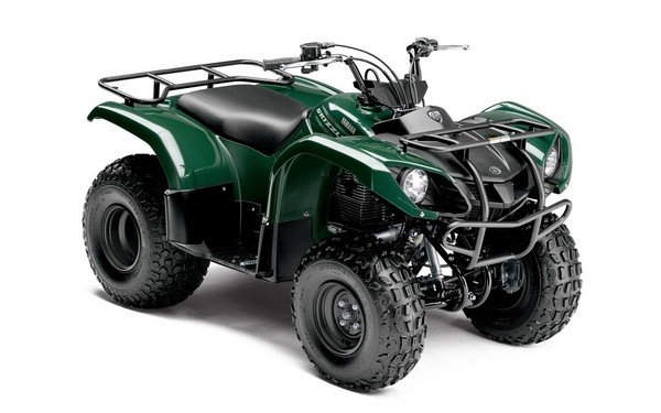 yamaha grizzly 125 automatic picture