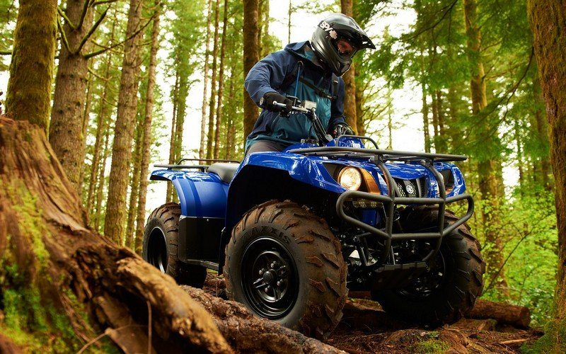2013 Yamaha Grizzly 350 Auto 4x4 picture - doc501464