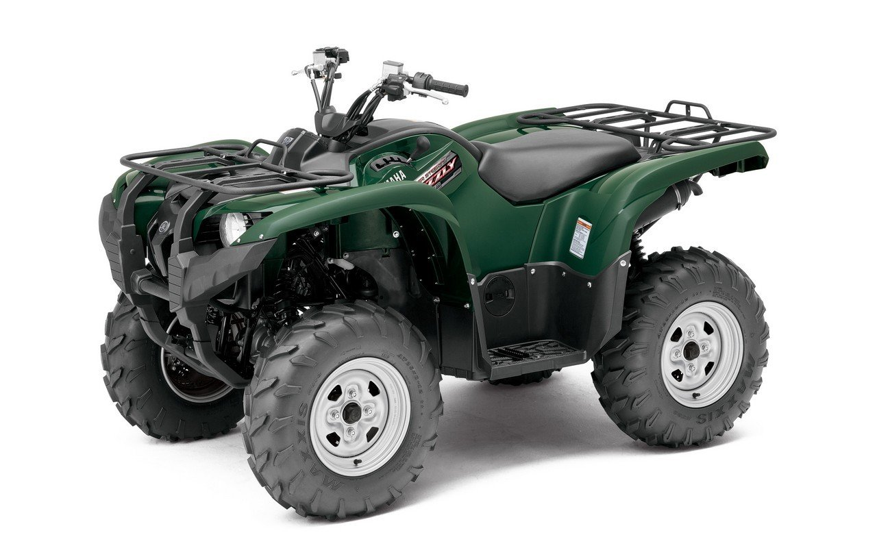 Grizzly 4x4 fuel problems autos post for 2007 yamaha rhino 660 blue book value