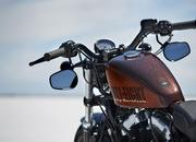 2014 Harley Davidson Forty-Eight - image 519496