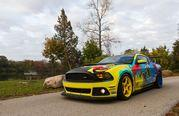 2014 Ford Mustang Roush Performance Pirelli World Challenge Racecar - image 531933