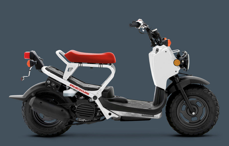 2014 Honda Ruckus High Resolution Exterior Wallpaper quality - image 531936