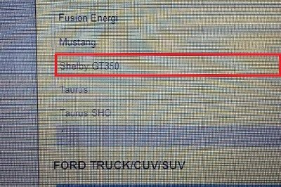 2015 Shelby Mustang GT350 Shows Up in Dealer Promo-Order System