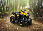 2014 Can-Am Renegade X xc - image 541994