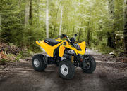 2014 Can-Am DS 250 - image 550139