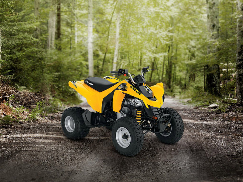 2014 Can-Am DS 250 High Resolution Exterior - image 550139