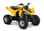 2014 Can-Am DS 250 - image 550140