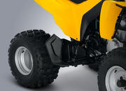 2014 Can-Am DS 250 - image 550136
