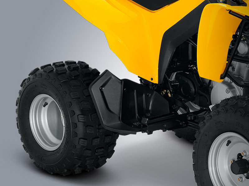 2014 Can-Am DS 250 Exterior - image 550136