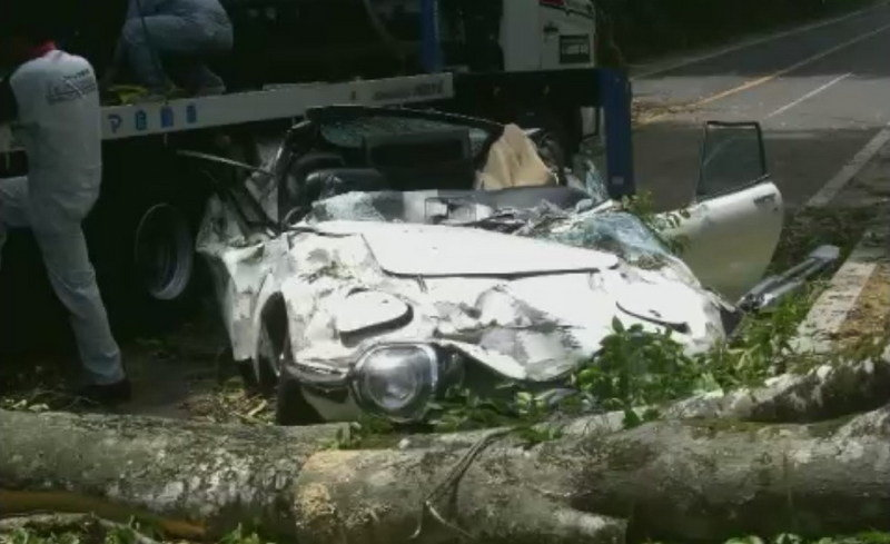 Rare Toyota 2000GT Destroyed by a Tree in Japan