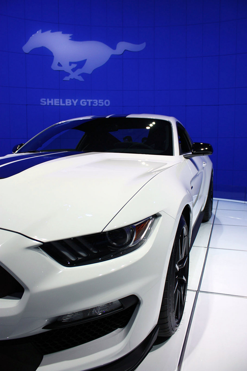 2016 2017 ford shelby gt350 mustang picture 579125. Black Bedroom Furniture Sets. Home Design Ideas