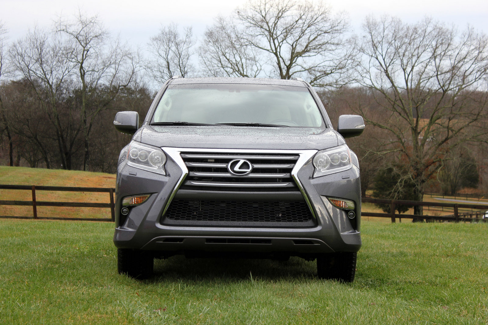 2015 lexus gx 460 driven picture 608269 car review top speed. Black Bedroom Furniture Sets. Home Design Ideas