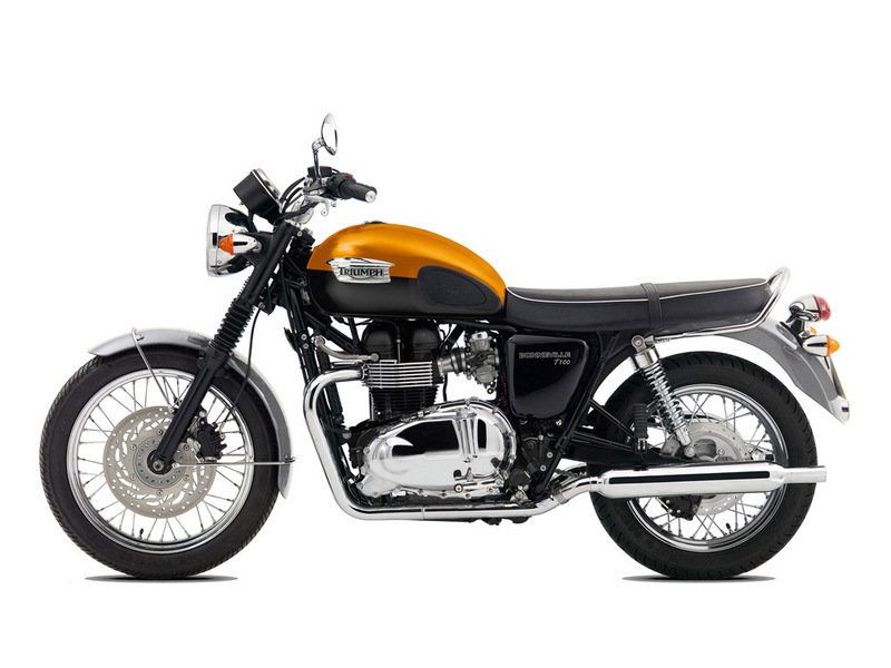 2015 Triumph Bonneville T100 High Resolution Exterior - image 581766