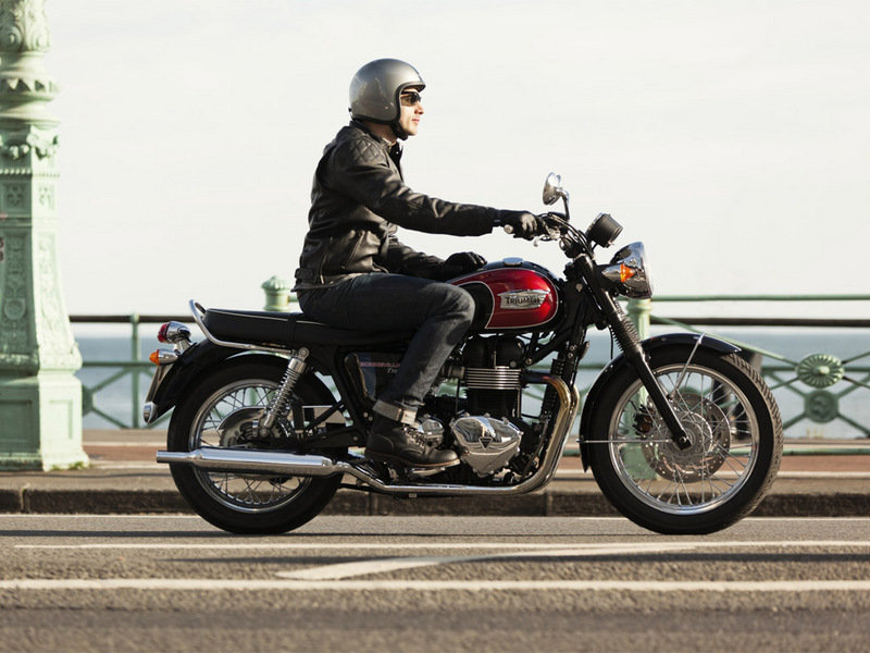 2015 Triumph Bonneville T100 High Resolution Exterior - image 581760