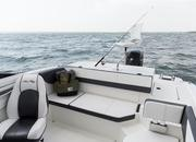 2015 Sea Ray 19 SPX Outboard - image 615839
