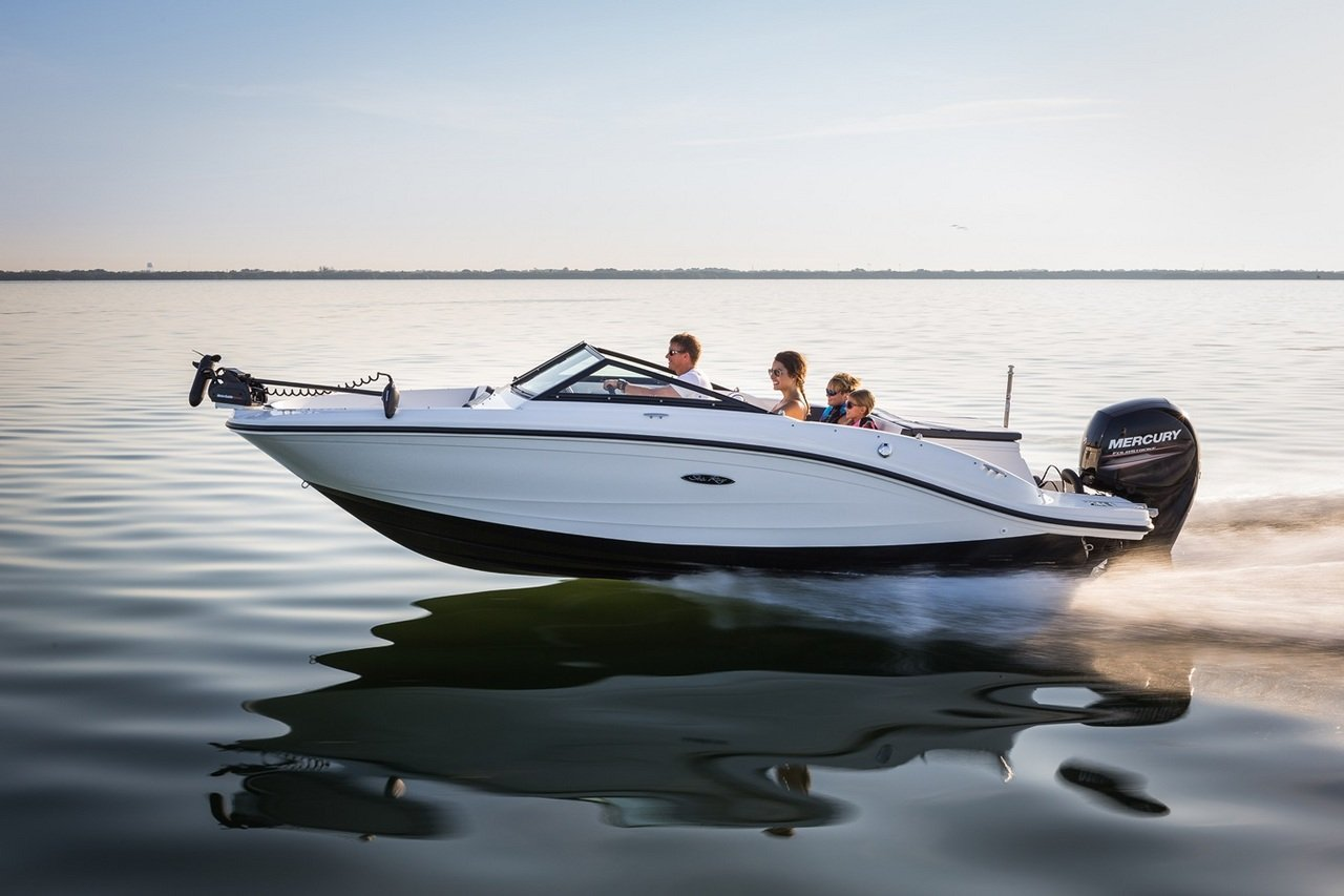2015 Sea Ray 19 SPX Outboard - Picture 615830 | boat ...