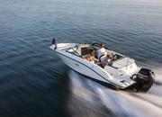 2015 Sea Ray 19 SPX Outboard - image 615832