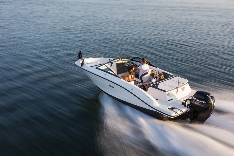 2015 Sea Ray 19 SPX Outboard High Resolution Exterior - image 615832