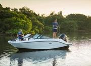 2015 Sea Ray 19 SPX Outboard - image 615834