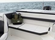 2015 Sea Ray 19 SPX Outboard - image 615837