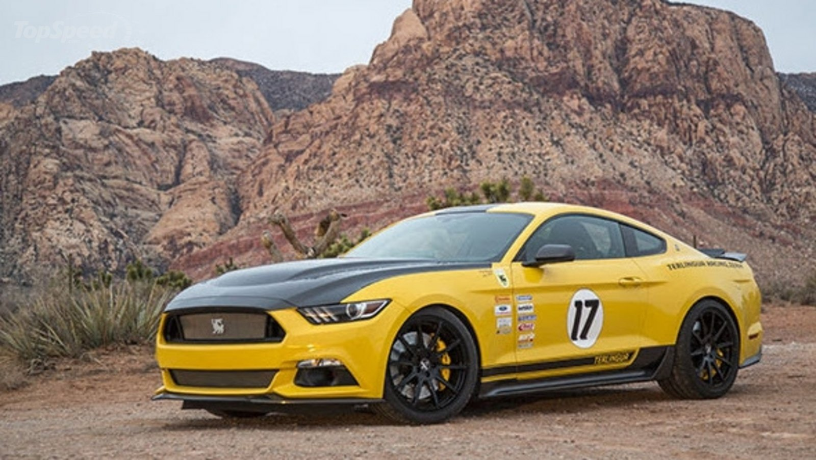 2016 shelby terlingua mustang review top speed. Black Bedroom Furniture Sets. Home Design Ideas