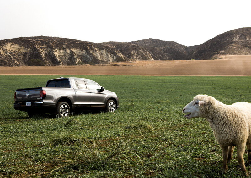 2017 Honda Ridgeline Stars In Honda's Super Bowl 50 Commercials - image 663872