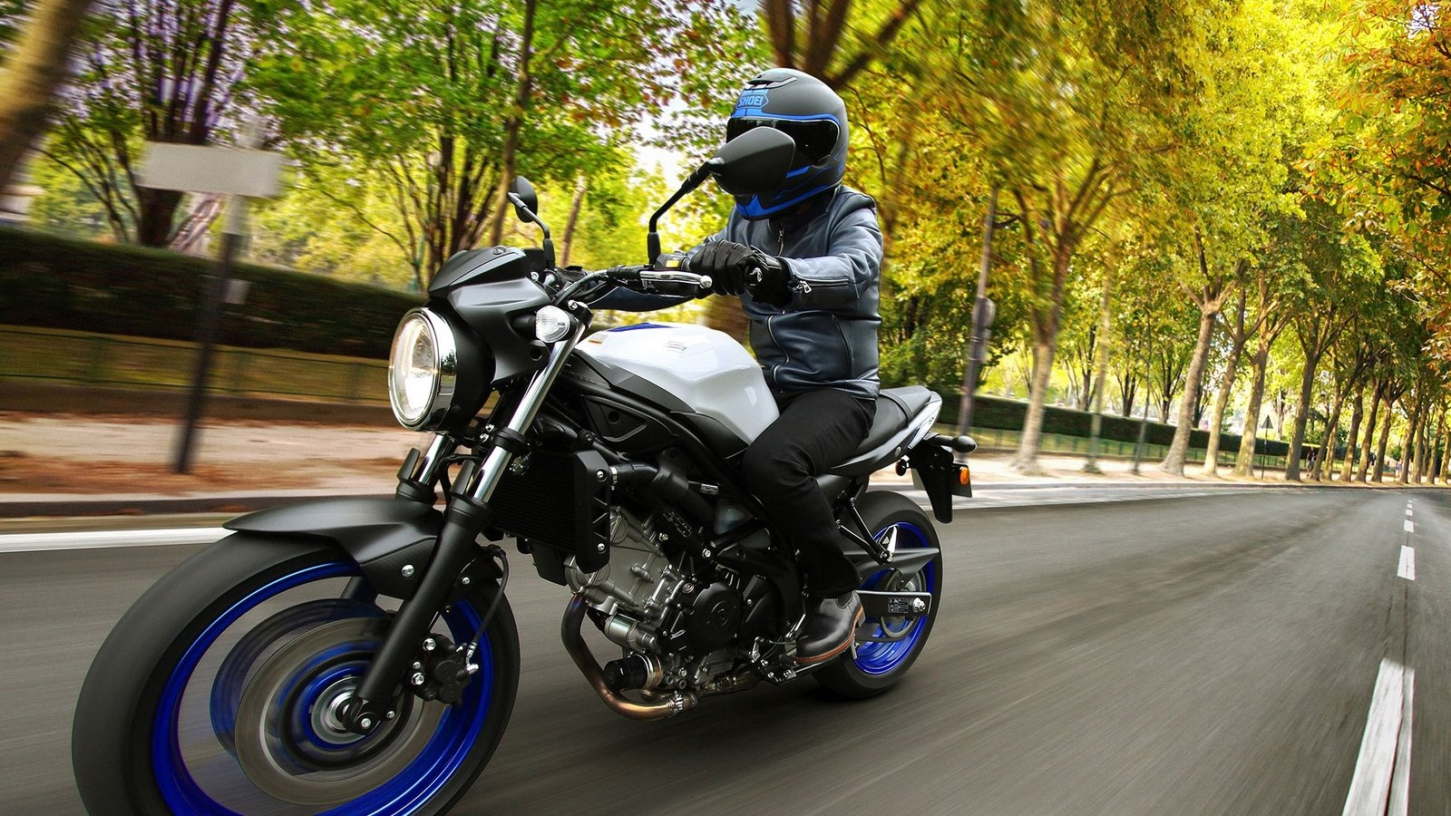 2017 suzuki sv650 abs picture 664041 motorcycle review top speed. Black Bedroom Furniture Sets. Home Design Ideas