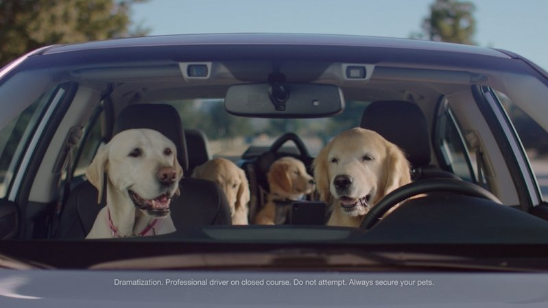 Subaru Skips Super Bowl (Again) In Favor Of Puppy Bowl