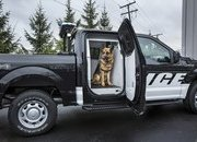 2016 Ford F-150 Special Service Vehicle Package - image 673215