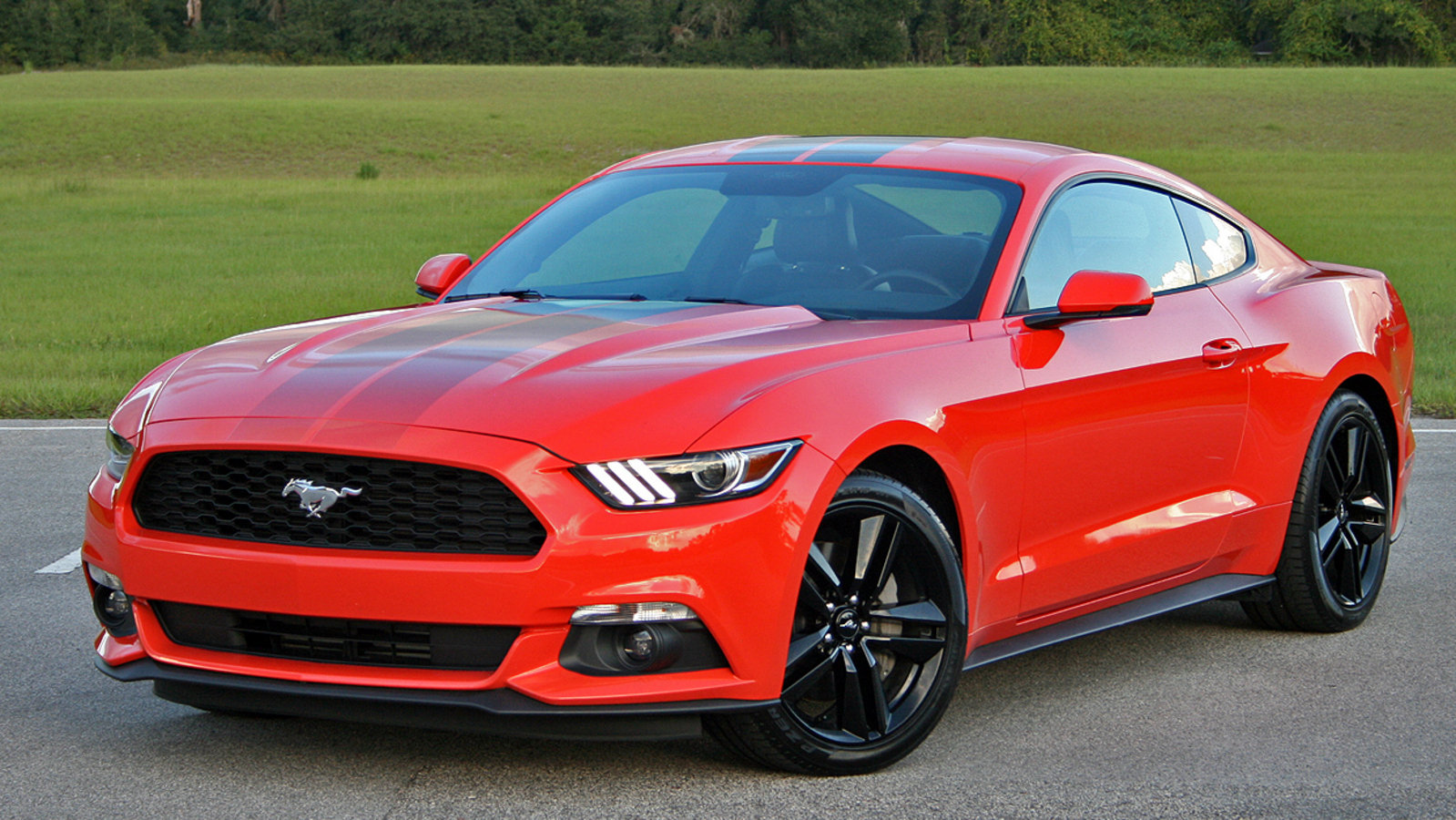 2016 ford mustang ecoboost driven review top speed. Black Bedroom Furniture Sets. Home Design Ideas